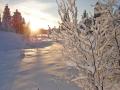 Vintersol